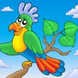 Cartoon parrot on branch - Stock Photo