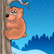 Cute bear climbing tree — Stock Photo