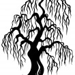 Willow tree silhouette - Stock Vector