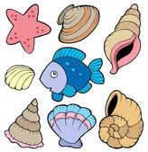 Various shells and fish collection — Stock Vector