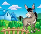 Donkey with flower behind fence — Stock Photo