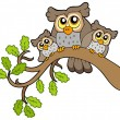 Stock Vector: Three cute owls on branch