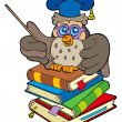 Owl teacher sitting on four books — Stock Vector