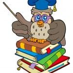 Owl teacher sitting on four books — Stock Vector #3690204