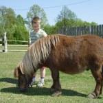 Boy with pony — Stock Photo