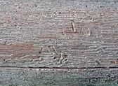 Antika ahşap, doğa closeup bozuk — Stok fotoğraf