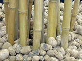 Bamboo and stones pile, interior abstract — Stock Photo