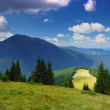 Mountain landscape in the summer — Stock Photo