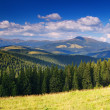 Royalty-Free Stock Photo: Summer landscape in mountains