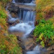 Mountain river — Stock Photo #2890112