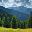 Photo: Summer landscape in mountains