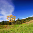 Mountain landscape in the end of summer — Stock Photo