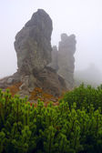 Stone in mountains — Stock Photo