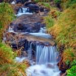 The mountain river — Stock Photo #3092512