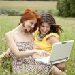 Royalty-Free Stock Photo: Two beautiful girls with notebook