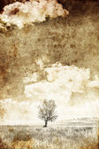 Alone tree. Photo in old image style. — Stock Photo