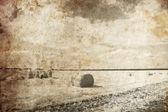 золотой тюков в сельской местности. фото в стиле старой изображения. — Стоковое фото