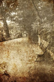 Bench in garden. Photo in old image style. — Stock Photo