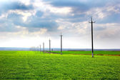 Telegraph pole at field — Stock Photo