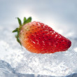 Strawberry on Ice — Stock Photo #2777740
