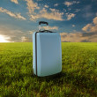 Suitcase in meadow - Stock Photo