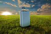 Suitcase in meadow — Stock Photo
