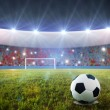 Soccer penalty kick - Foto Stock