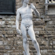 Florence - statue of David by Michaelang - Stok fotoğraf