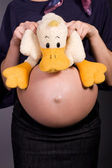 Nine month old belly and sweet duck — Stock Photo