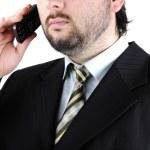 Portrait of Businessman — Stock Photo #2718965