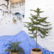 Detail from typical street in chefchaouen, in north of morocco — Stock Photo