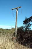Utility pole — Foto Stock