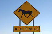 Horse Crossing Next 10 Miles — Stock Photo