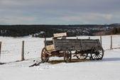 Wagon — Stock Photo