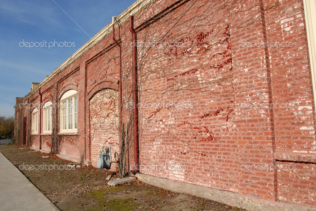 Old brick factory building, Petaluma, California — Stock Photo #3206006