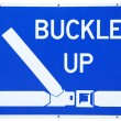 Stock Photo: Buckle Up