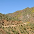 Apache Trail - Stock Photo