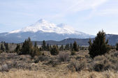 Mt. Shasta — Foto Stock