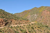 Apache Trail — Stock Photo