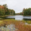 Autumn lake - Photo