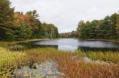 Podzimní jezero — Stock fotografie