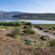 Topaz Lake — Stock Photo #4082628