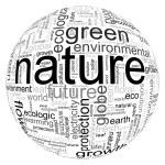 Nature illustration — Stock Photo
