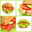 Collage of fresh sandwiches — Stock Photo