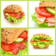 Collage of fresh sandwiches — Stock Photo #2774254