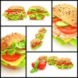 Collage of  fresh sandwiches - Stock Photo