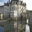 chenonceaux castle in france — Stock Photo