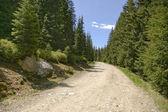 Mountain gravel road — Stock Photo