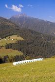 Valle di montagna nelle alpi austriache in estate — Foto Stock