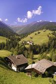Bergdal in oostenrijkse alpen in de zomer — Stockfoto
